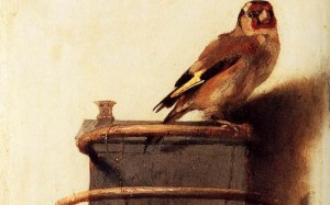 image of 'The Goldfinch'