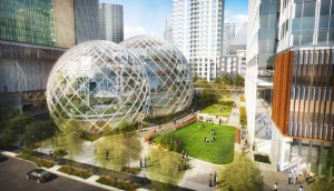 "Glazed spheres at proposed Amazon campus will provide ""a comfortable, park like place to brainstorm."""
